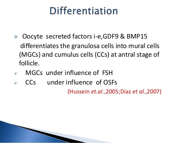 Gdf9 and bmp15 for Mural granulosa cells