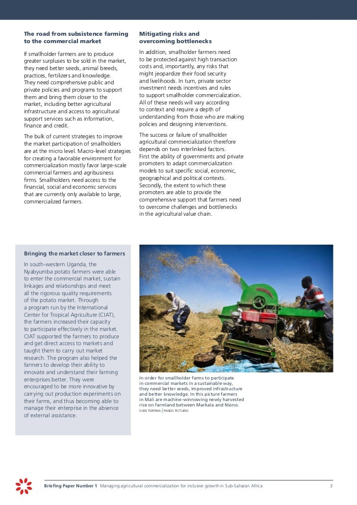 Managing agricultural commercialization for inclusive for Commercialization roadmap