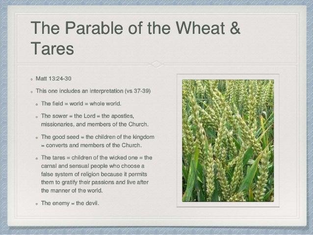Lds new testament teacher S manual Seminary