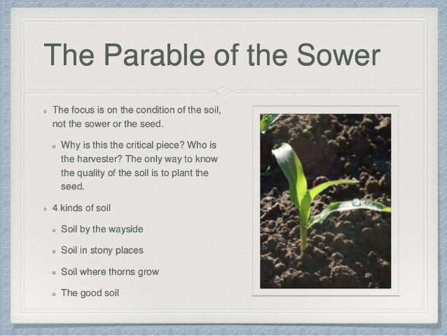 parables of the kingdom summary