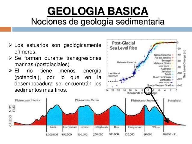GEOLOGIA BASICA Nociones de geología sedimentaria  Los estuarios son geológicamente efímeros.  Se forman durante transgr...