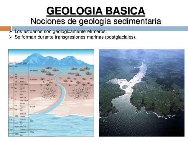 GEOLOGIA BASICA Nociones de geología sedimentaria  Los estuarios son geologicamente efímeros.  Se forman durante transgr...