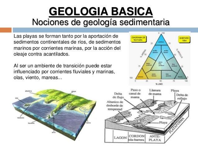 GEOLOGIA BASICA Nociones de geología sedimentaria Las playas se forman tanto por la aportación de sedimentos continentales...