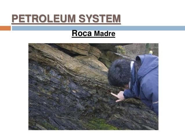 PETROLEUM SYSTEM Roca Madre
