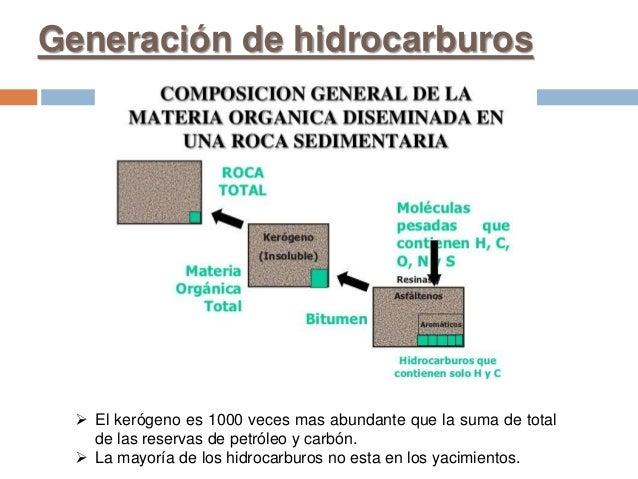 Generación de hidrocarburos  El kerógeno es 1000 veces mas abundante que la suma de total de las reservas de petróleo y c...