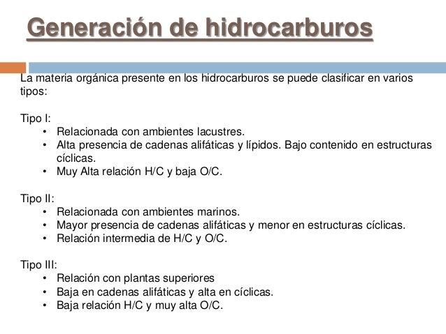 Generación de hidrocarburos La materia orgánica presente en los hidrocarburos se puede clasificar en varios tipos: Tipo I:...