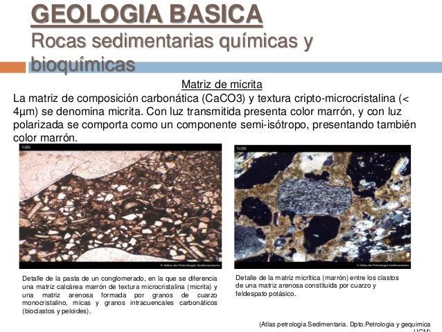 Matriz de micrita La matriz de composición carbonática (CaCO3) y textura cripto-microcristalina (< 4µm) se denomina micrit...