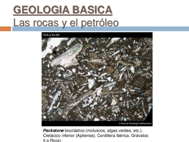 Packstone bioclástico (moluscos, algas verdes, etc.). Cretácico inferior (Aptiense). Cordillera Ibérica. Grávalos GEOLOGIA...
