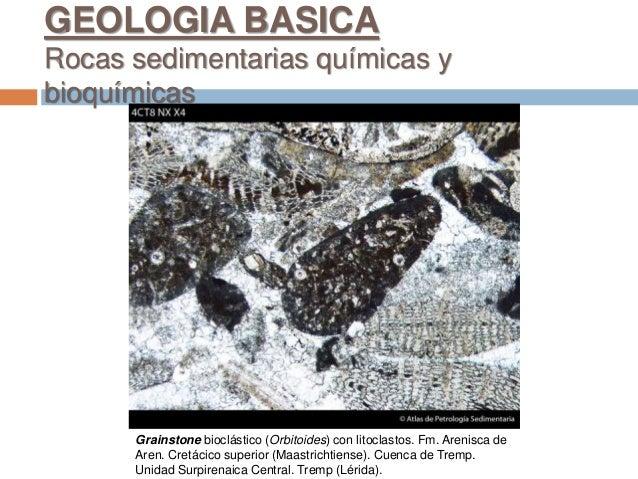 Grainstone bioclástico (Orbitoides) con litoclastos. Fm. Arenisca de Aren. Cretácico superior (Maastrichtiense). Cuenca de...