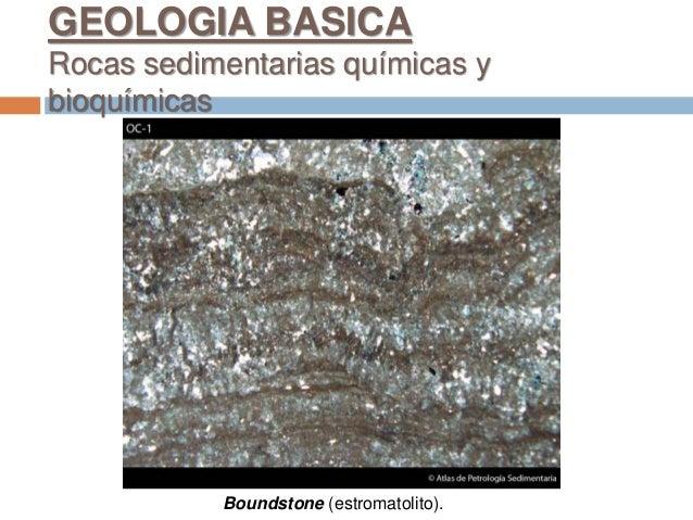 Boundstone (estromatolito). GEOLOGIA BASICA Rocas sedimentarias químicas y bioquímicas