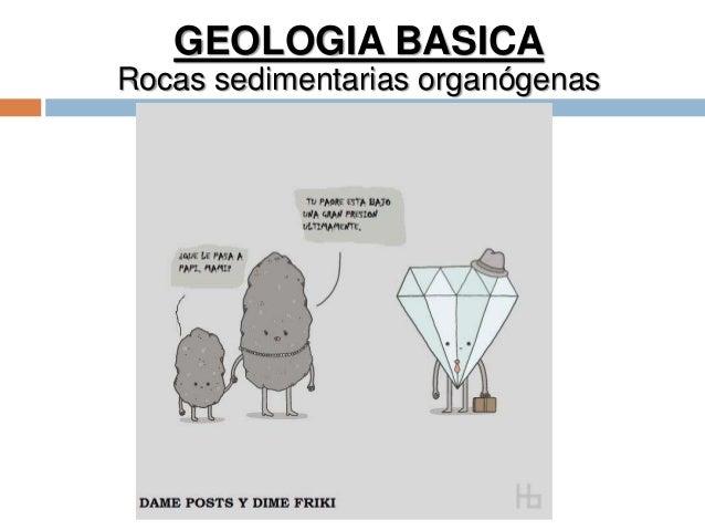 GEOLOGIA BASICA Rocas sedimentarias organógenas