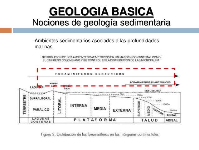 GEOLOGIA BASICA Nociones de geología sedimentaria Ambientes sedimentarios asociados a las profundidades marinas.