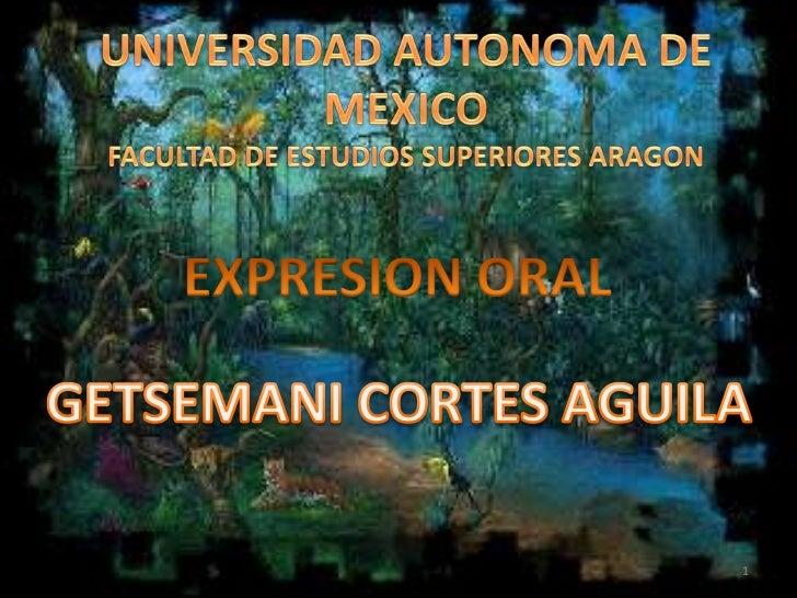 UNIVERSIDAD AUTONOMA DE MEXICO<br />FACULTAD DE ESTUDIOS SUPERIORES ARAGON<br />EXPRESION ORAL<br />GETSEMANI CORTES AGUIL...