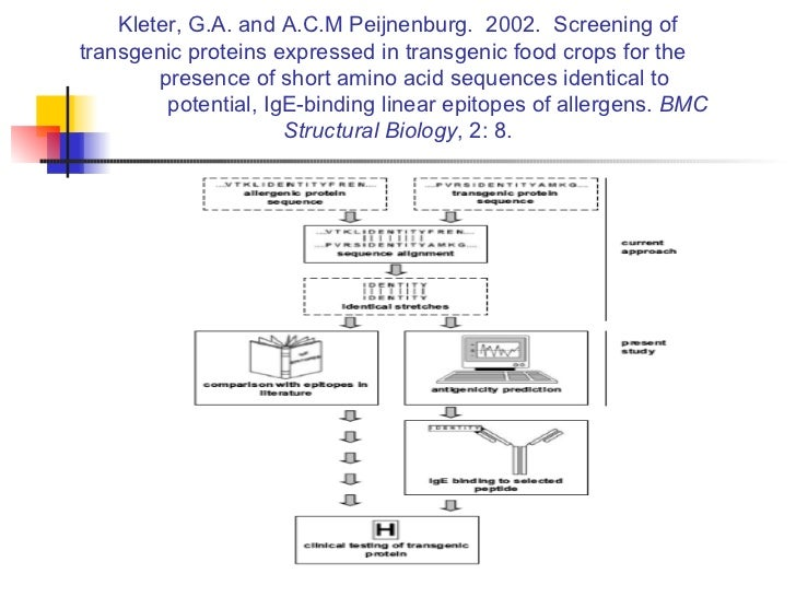 Kleter, G.A. and A.C.M Peijnenburg.  2002.  Screening of transgenic proteins expressed in transgenic food crops for the  p...