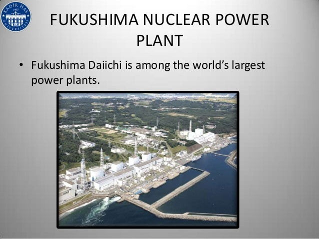 nuclear crisis in hawaii essay April wants to write an essay promoting the global use of nuclear energy over conventional resources  more effective option for solving the global energy crisis.