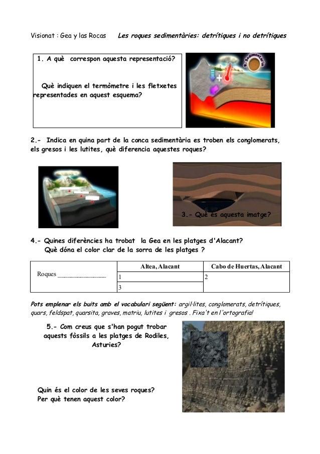 Visionat : Gea y las Rocas     Les roques sedimentàries: detrítiques i no detrítiques  1. A què correspon aquesta represen...