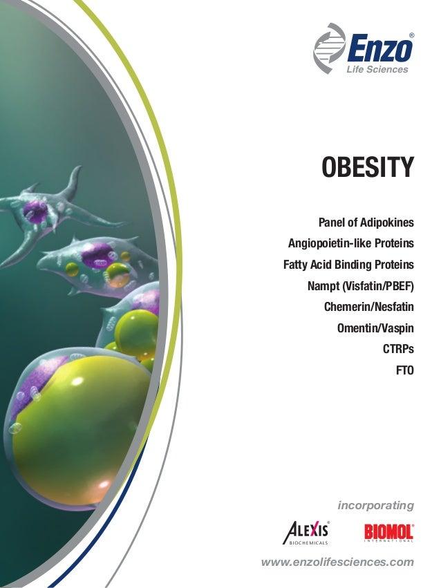 incorporating www.enzolifesciences.com OBESITY Panel of Adipokines Angiopoietin-like Proteins Fatty Acid Binding Proteins ...