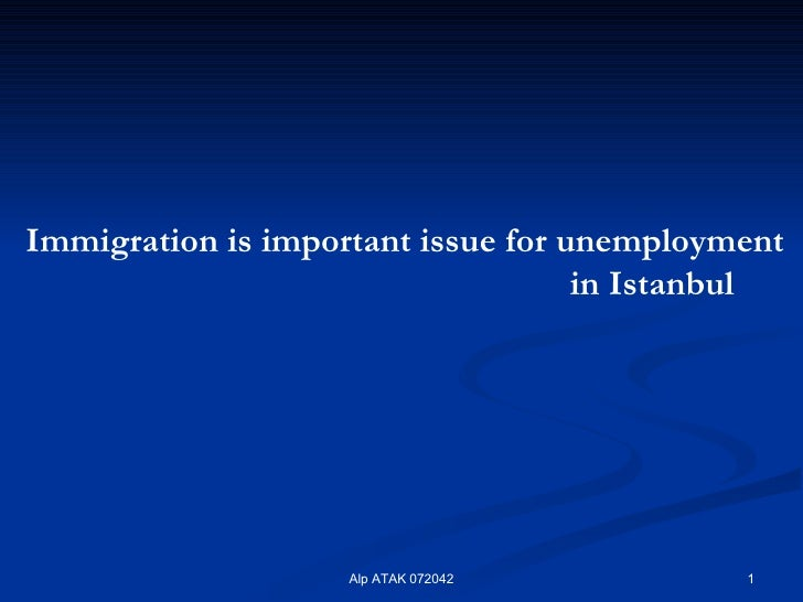 Immigration  is important issue for   unemployment  in Istanbul