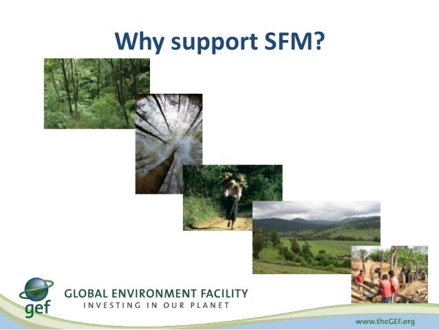 Why support SFM?