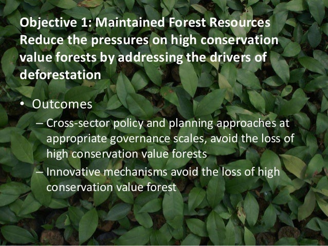 Objective 1: Maintained Forest Resources  Reduce the pressures on high conservation  value forests by addressing the drive...