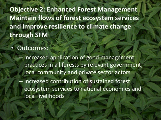 Objective 2: Enhanced Forest Management  Maintain flows of forest ecosystem services  and improve resilience to climate ch...