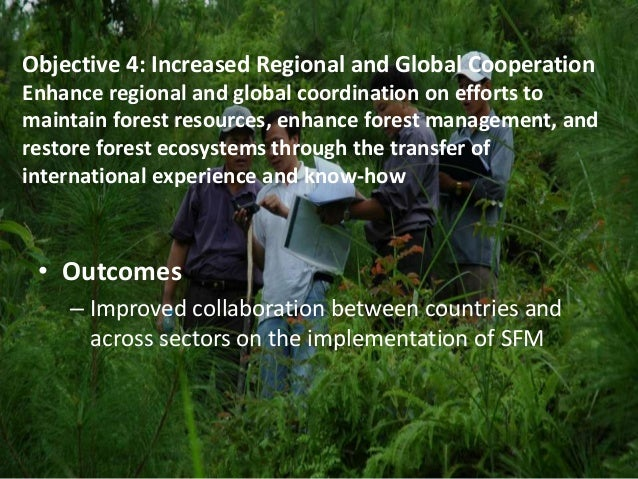 Objective 4: Increased Regional and Global Cooperation  Enhance regional and global coordination on efforts to  maintain f...