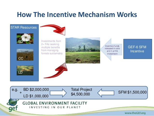 How The Incentive Mechanism Works  Investments from  2+ FAs seeking  multiple benefits  from managing  forests sustainably...