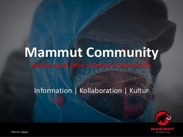 Mammut Community wieso auch eine interne Community Information | Kollaboration | Kultur Peter Erni, @pgart