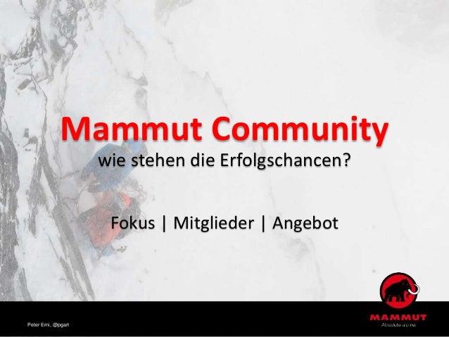 Mammut Community wie stehen die Erfolgschancen? Fokus | Mitglieder | Angebot Peter Erni, @pgart