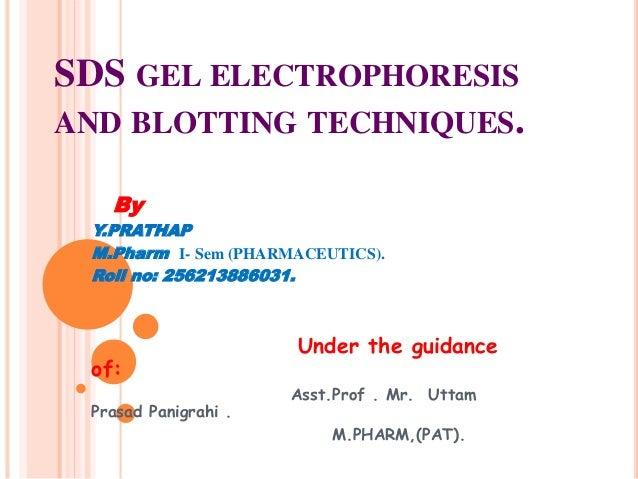 SDS GEL ELECTROPHORESIS  AND BLOTTING TECHNIQUES.  By  Y.PRATHAP  M.Pharm I- Sem (PHARMACEUTICS).  Roll no: 256213886031. ...