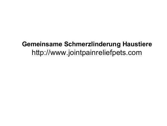 Gemeinsame Schmerzlinderung Haustiere http://www.jointpainreliefpets.com