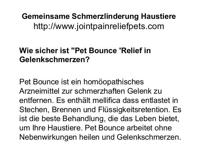 """Gemeinsame Schmerzlinderung Haustiere http://www.jointpainreliefpets.com Wie sicher ist """"Pet Bounce 'Relief in Gelenkschme..."""