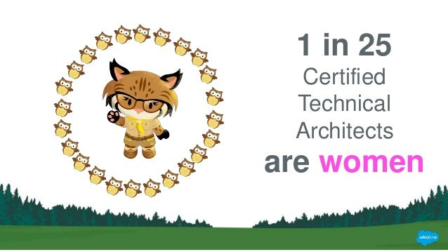 Equality Salesforce Certified Technical Architect