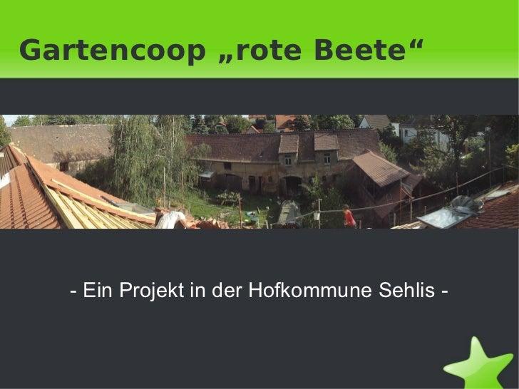 """Gartencoop """"rote Beete""""    - Ein Projekt in der Hofkommune Sehlis -"""