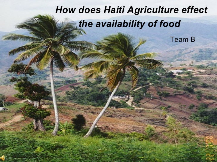 How does Haiti Agriculture effect the availability of food   Team B