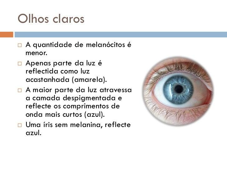 Genética - Cor dos Olhos Slide 4