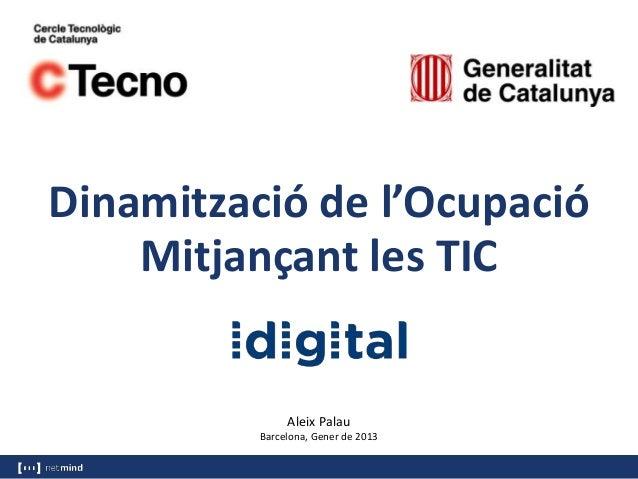 Dinamització de l'Ocupació    Mitjançant les TIC               Aleix Palau          Barcelona, Gener de 2013