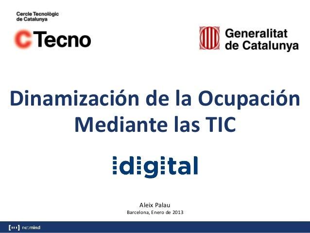 Dinamización de la Ocupación Mediante las TIC  Aleix Palau Barcelona, Enero de 2013