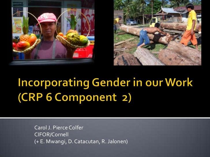 Carol J. Pierce ColferCIFOR/Cornell(+ E. Mwangi, D. Catacutan, R. Jalonen)