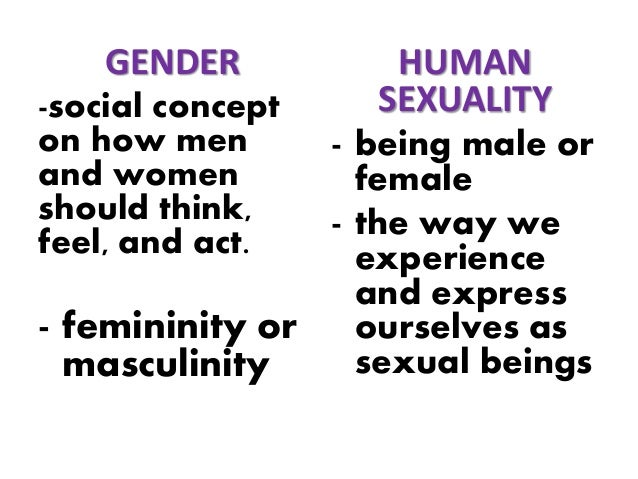Gender Sexuality 91