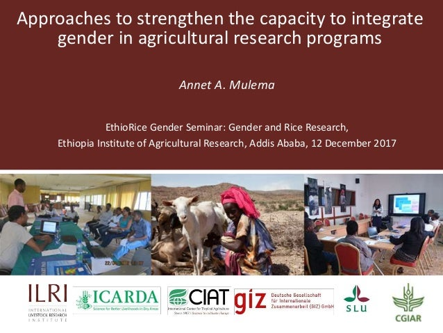 Approaches to strengthen the capacity to integrate gender in agricultural research programs Annet A. Mulema EthioRice Gend...