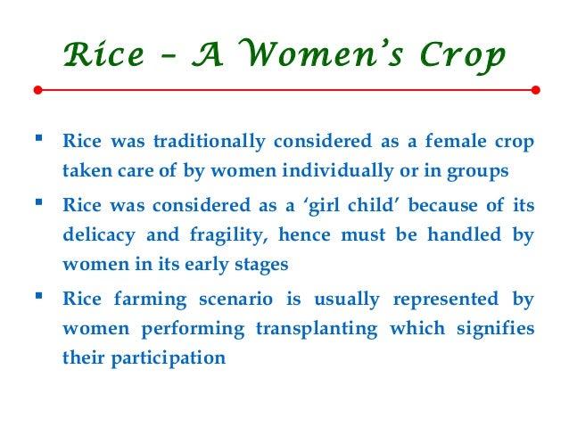 Gender issues in_ricefarming_crri Slide 3