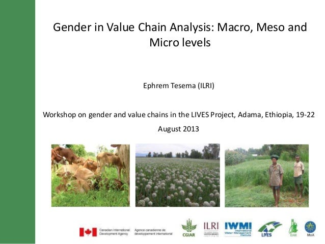 Gender in Value Chain Analysis: Macro, Meso and Micro levels Ephrem Tesema (ILRI) Workshop on gender and value chains in t...