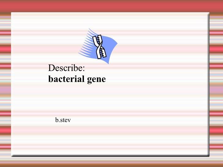 Describe: bacterial gene b.stev