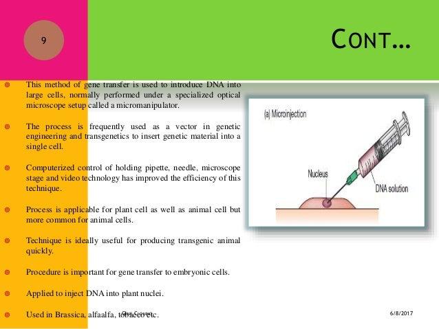 methods of gene transfer in plants pdf