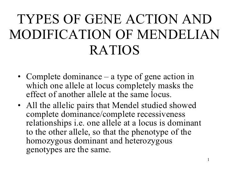 TYPES OF GENE ACTION AND MODIFICATION OF MENDELIAN RATIOS <ul><li>Complete dominance – a type of gene action in which one ...