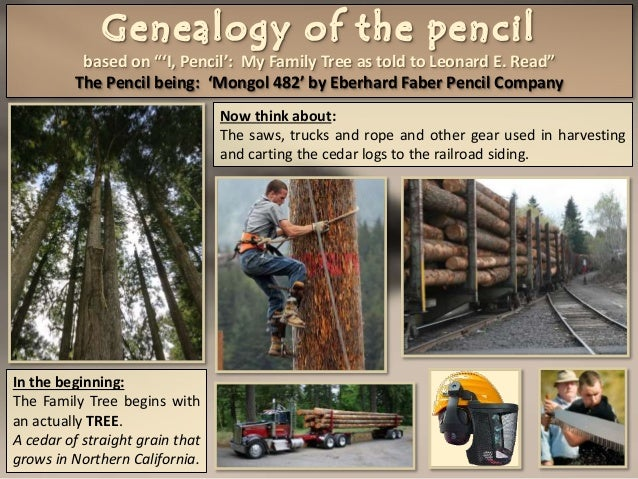 Genealogy Of The Pencil Based On I Pencil My Family
