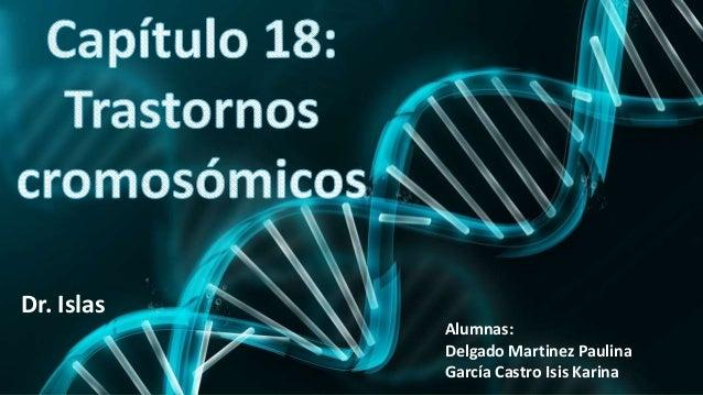 Alumnas: Delgado Martinez Paulina García Castro Isis Karina Dr. Islas