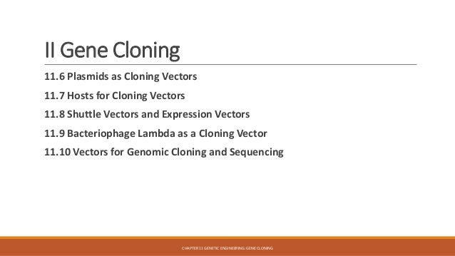 an overview of the cloning morality The ethics of human cloning and the fate of science in a democratic society kenneth d pimple this symposium is brought to you for free and open access by the valparaiso university law school at valposcholar it has been accepted for inclusion in valparaiso university law review by an authorized administrator of.