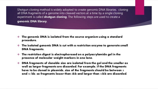 experiment creating a genomic library of This probe is used to screen a genomic library like a the initial experiments must be based on a guess by the provides a mechanism of creating.